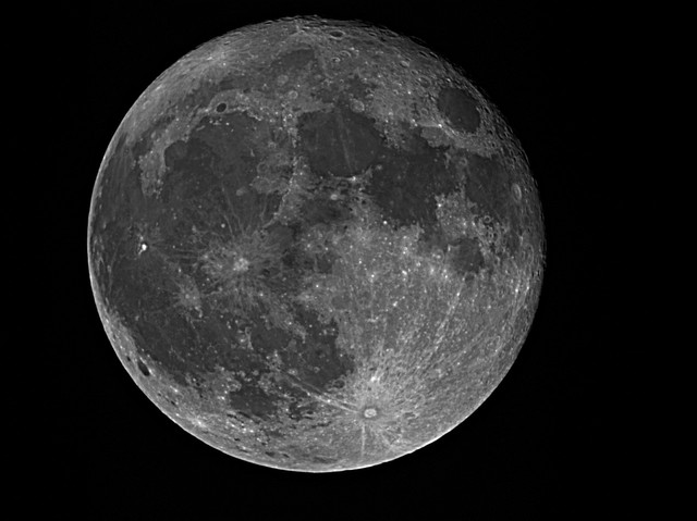FULL MOON 11-02-18 wavelet.jpg