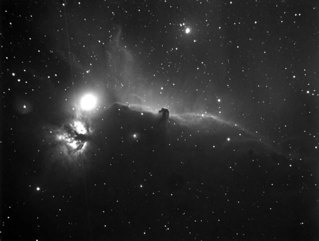 Narrowband Hydrogen Alpha Horsehead large low res.jpg